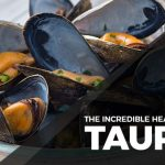 10 Surprising Health Benefits of Taurine