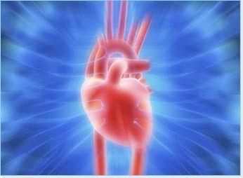 Improve Cardiovascular Health Naturally
