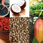 Podcast 9   Top 5 Superfoods You Can't Live Without