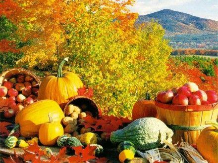 Top Ten Autumn Foods