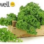 9 Powerful Health Benefits of Kale