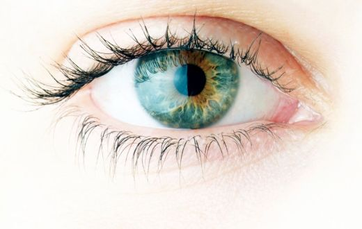 Omega 3 for Healthy Eyes