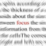 Foods for a Focused Mind