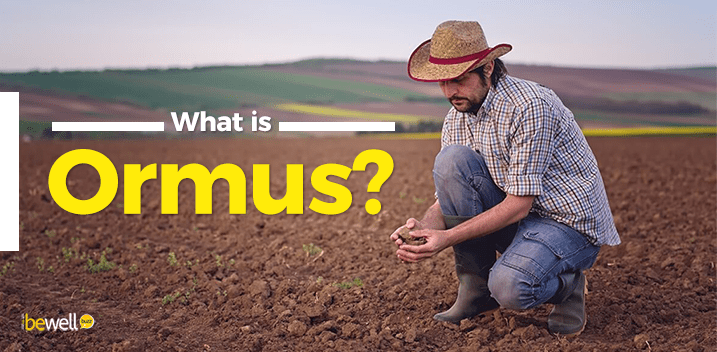 What is Ormus?