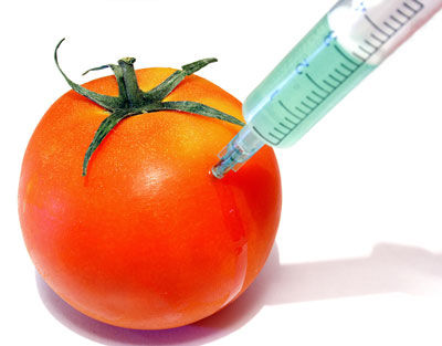 Top 10 Genetically Modified Foods To Avoid