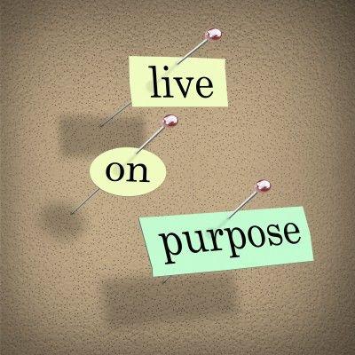 http://www.bewellbuzz.com/wp-content/uploads/2012/06/life-purpose.jpg