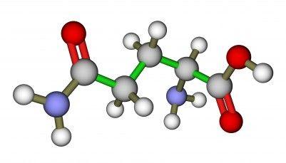 What Is L-Glutamine?