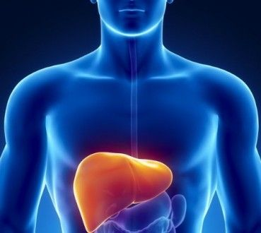 How Healthy Is Your Liver?
