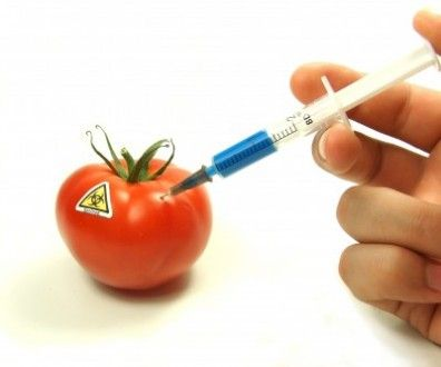 Can You Trust Studies On GM Foods?