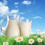 """A Land Of Milk and Honey"" – Two Forgotten Powerful Medicines. Part 1"