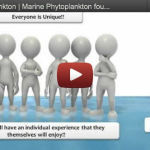 Marine Phytoplankton – Super Nutrient From The Sea