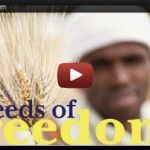 Seeds of Freedom