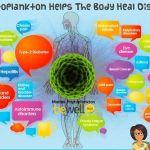 Health Benefits Of Marine Phytoplankton