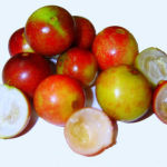 Amazing Secrets of the Acerola Berry