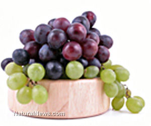Grape-Enriched Diet Protects Against Metabolic Dysfunction