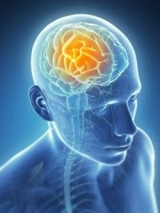 Craniosacral Therapy Another Natural Way Of Treating