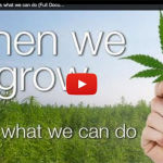 Uncovering The Cannabis Conspiracy – WHEN WE GROW, This is what we can do