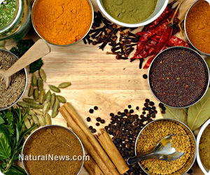 Herbs and Natural Remedies for Hypertension
