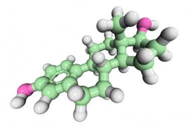 Understanding How DIM and Cruciferous Veggies Can Block Estrogen