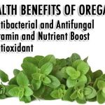 The Endless Health Benefits Of Oregano Oil
