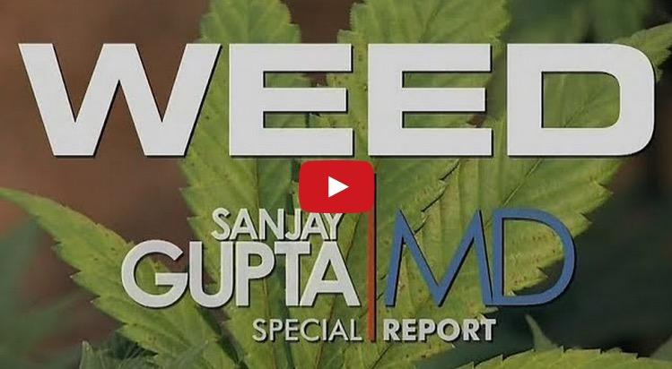 Weed-CNN-CBD