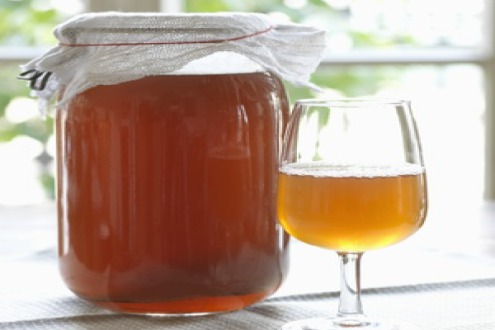 kombucha benefits