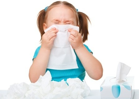 natural hoslitic remedies for allergies