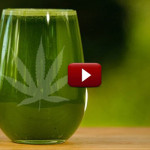 Pros and Cons Of Juicing Cannabis