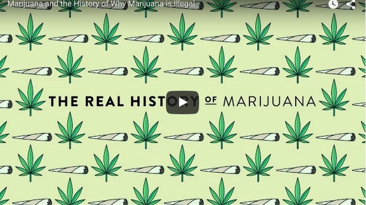 marijuana-history