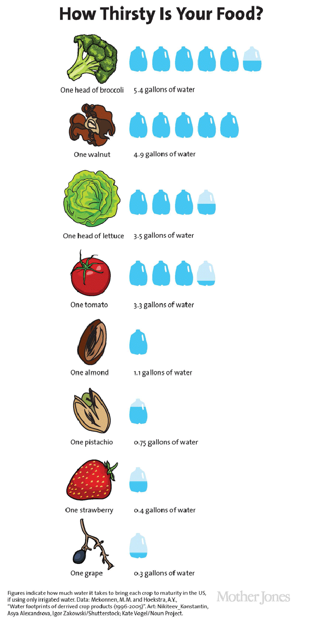 CalWater3-food