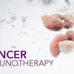 Immunotherapy for Blood Cancer Shows Promise