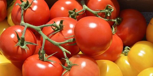 9-tomatoes