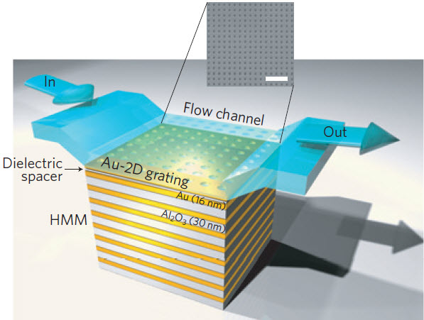 Schematic diagram of the gold-aluminum nanostructured metamaterial used in the new biosensor.  Credit: Kandammathe Valiyaveedu Sreekanth et al./Nature Materials