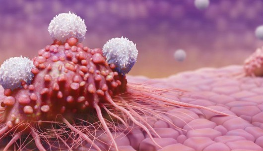 Cancer Immunotherapy: Treatment Breakthroughs