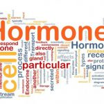 How Hormones are linked to Weight Gain, Affecting Your Body Shape