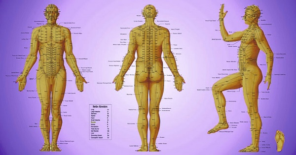 In Chinese Traditional medicine, energy flows through our 12 main meridians or energetic pathways.