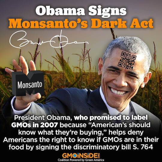 (Graphic courtesy of GMO Inside)