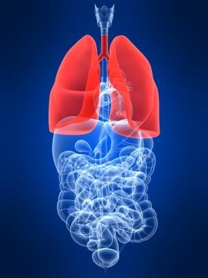 tissue-regeneration