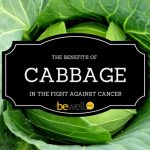 The Benefits of Cabbage Against Fighting Cancer