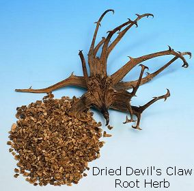 devils-claw-dried-herb