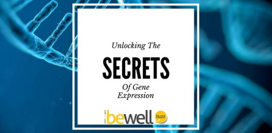 The Secrets of Gene Expression Unlocked