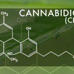 Top 5 Ways To Reduce Chronic Joint Pain Naturally – Cannabidiol (CBD)