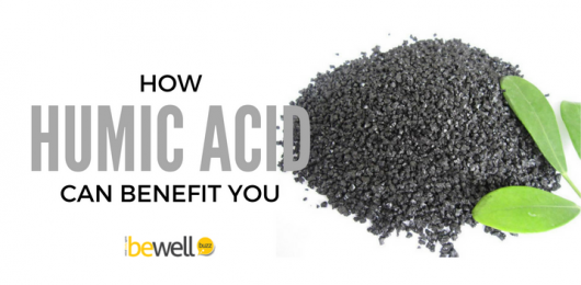 <thrive_headline click tho-post-43458 tho-test-360>Discover The Superpowers of Humic and Fulvic Acids</thrive_headline>