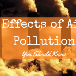 The 4 Effects of Air Pollution That You Need to Know