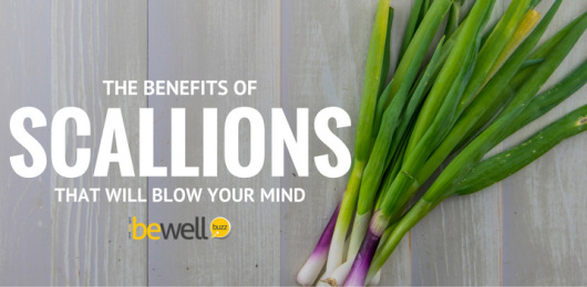 benefits of scallions
