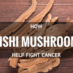 How Reishi Mushroom Fights Cancer