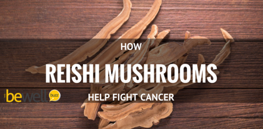 <thrive_headline click tho-post-44211 tho-test-210>How Reishi Mushroom Fights Cancer</thrive_headline>