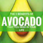 5 Avocado Benefits You Need in Your Life