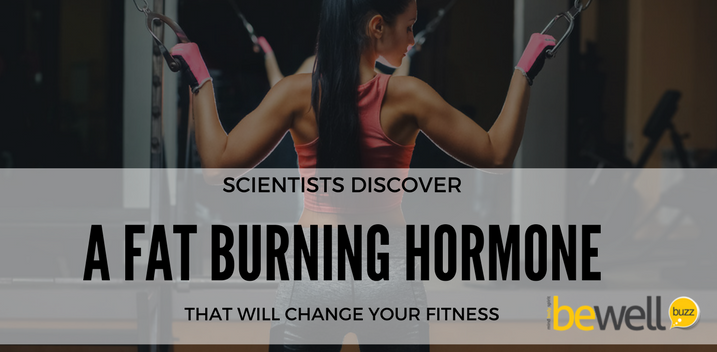 fat burning hormone