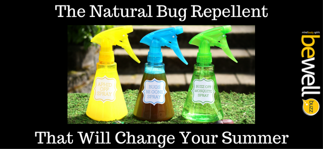 natural bug repellent